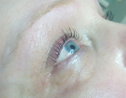 lash lifting3.JPG